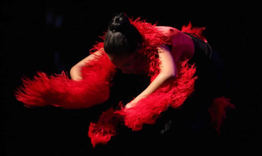 Danse-CEA.jpg