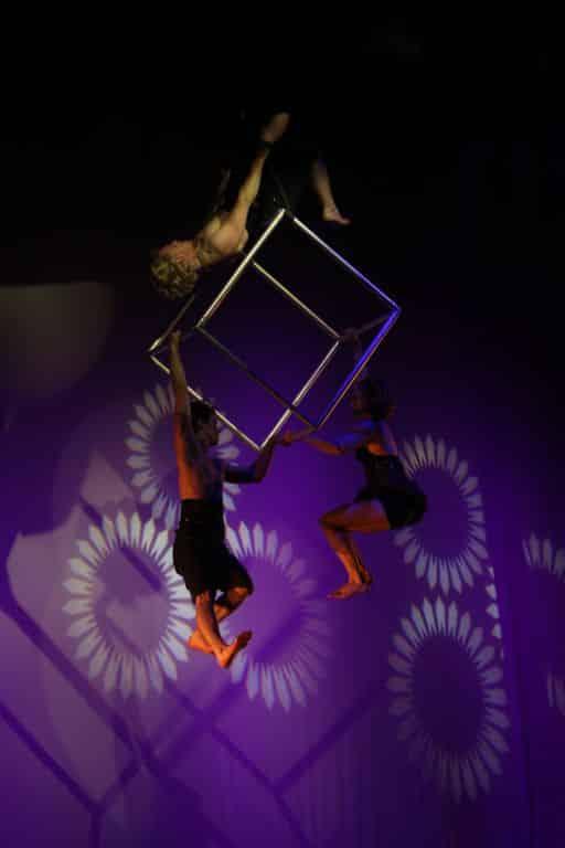 Numero-de-cirque-3.jpg